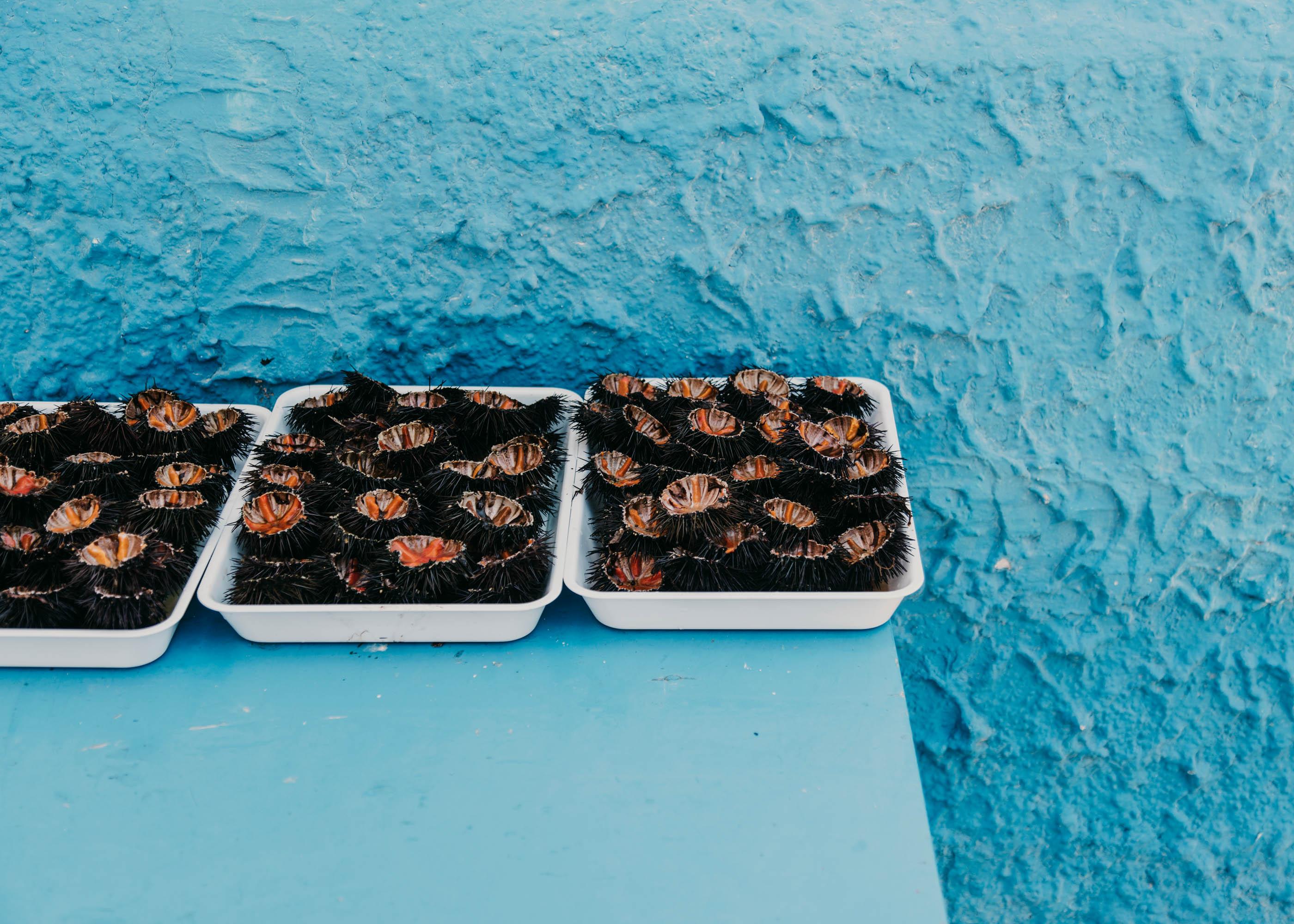 #italy #puglia #masseria #morosseta #openhouse #food