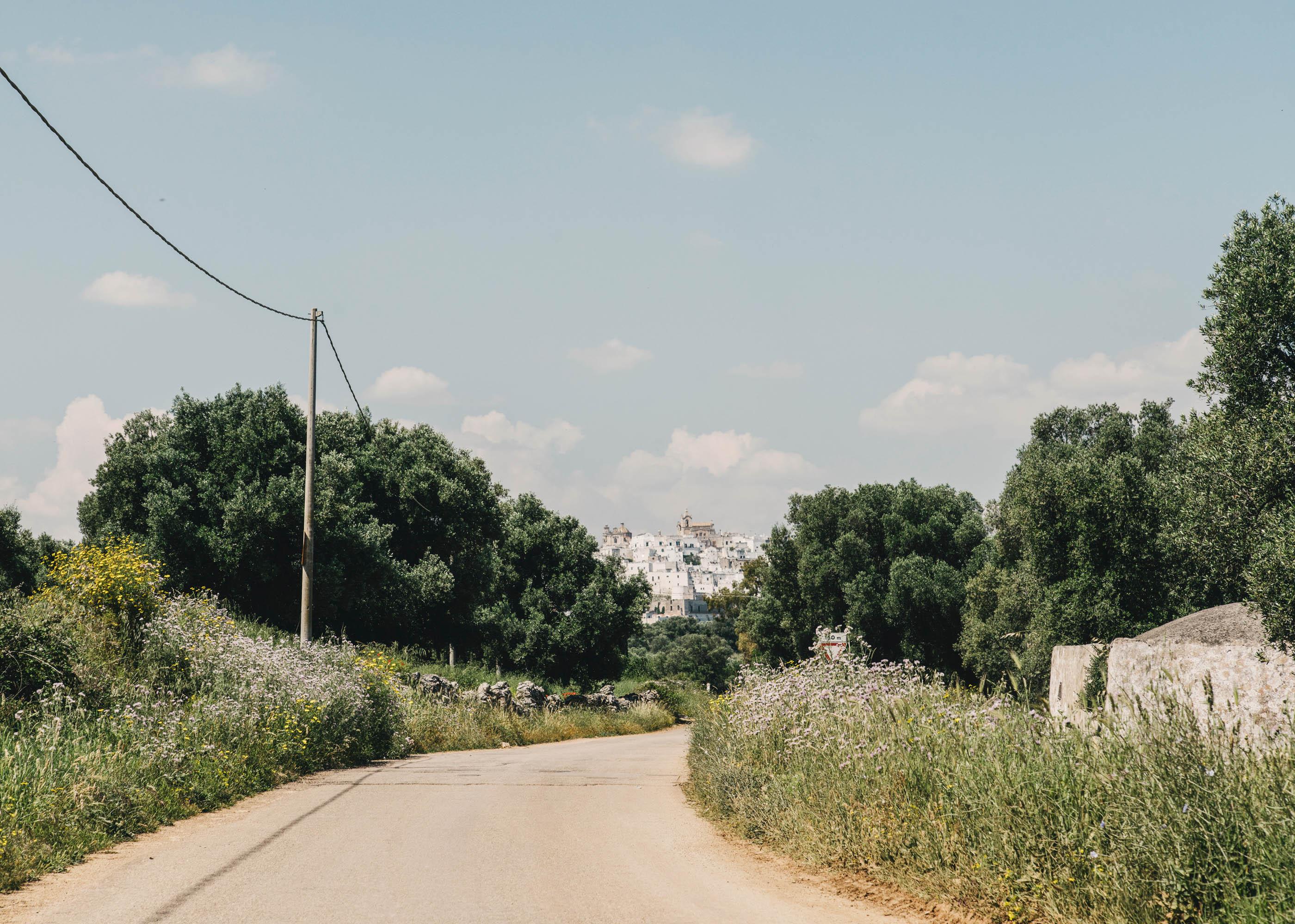 #editorial #italy #puglia #masseria #morosseta #openhouse #road #ostuni