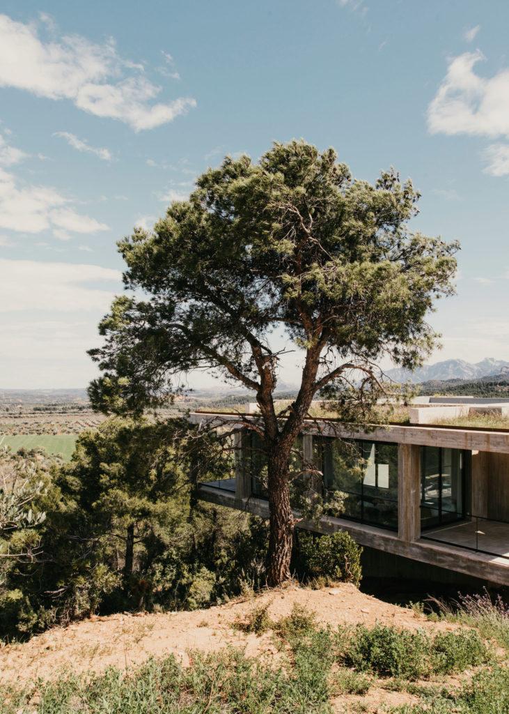 #architecture #spain #openhouse #solo #pezovonellrichshausen #forest
