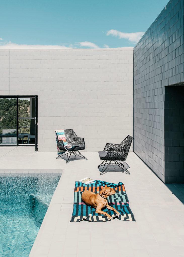 #architecture #spain #openhouse #solo #pezovonellrichshausen #pools #zuzunaga #animals