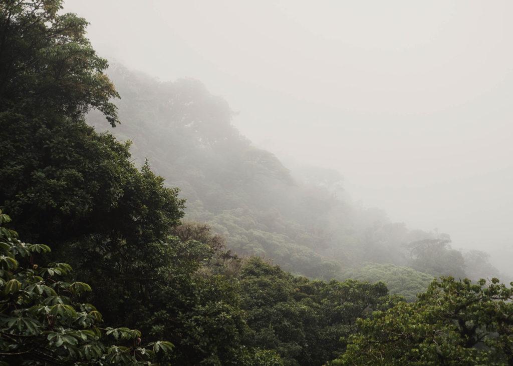 #personal #costarica #1617 #monteverde
