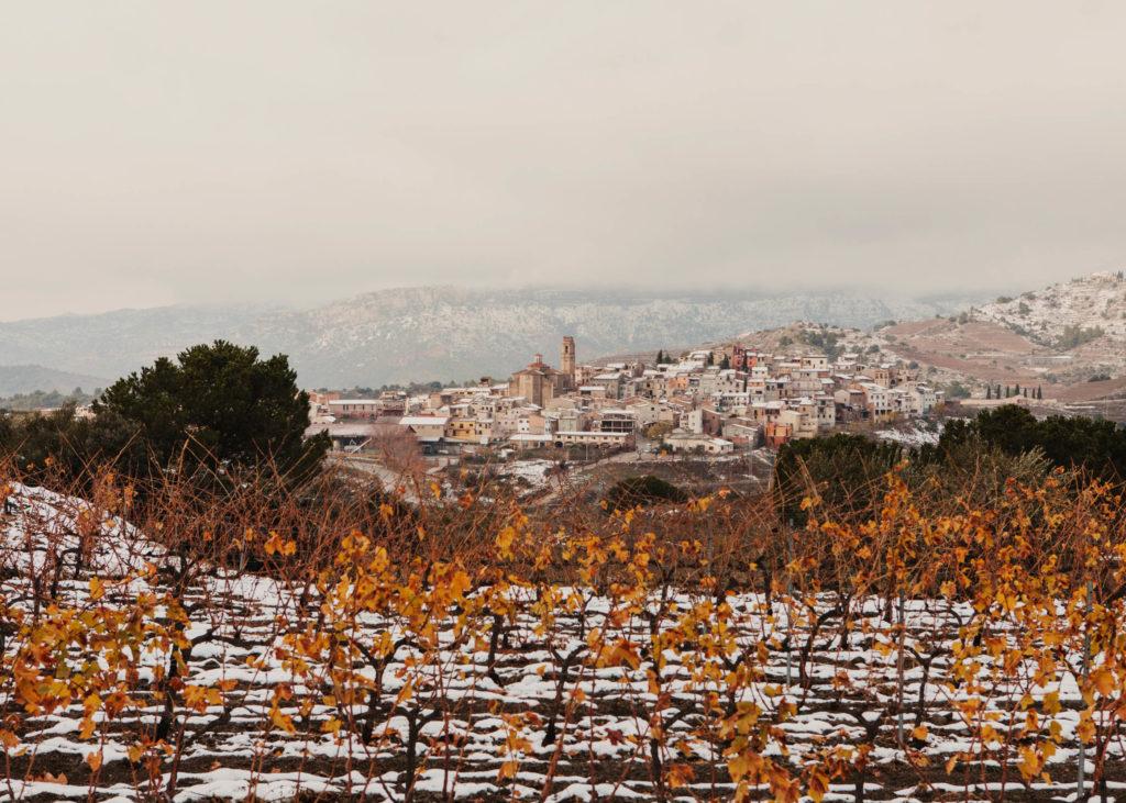 #masmartinet #wine #priorat #spain #enroute #gratallops