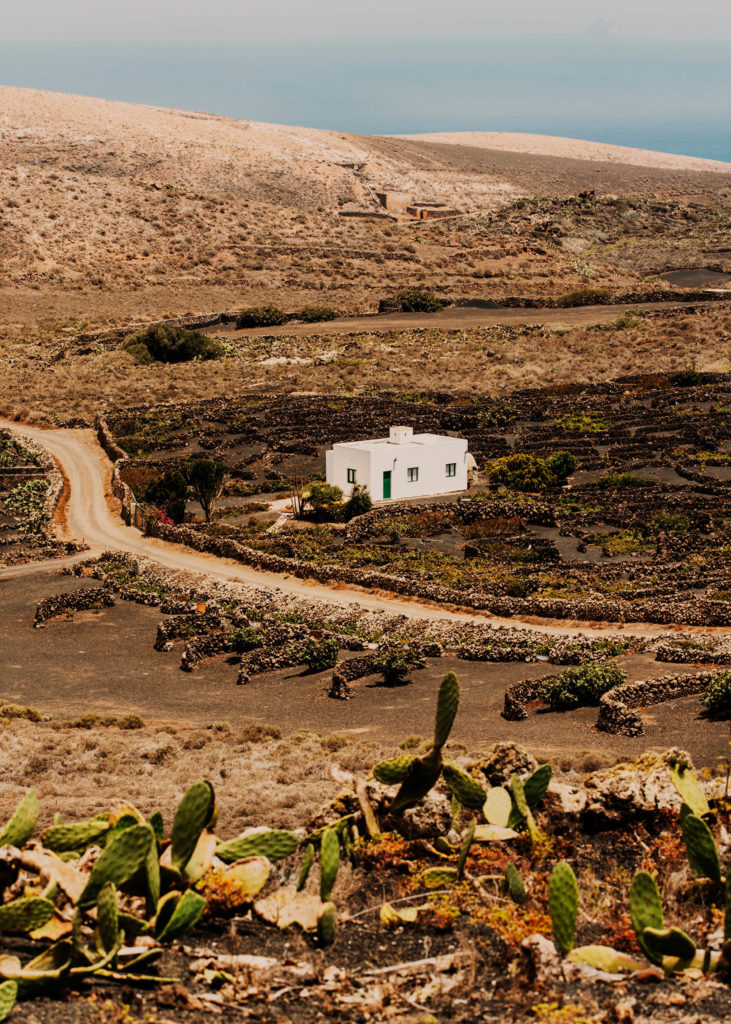 #1617 #lanzarote #houses #travel