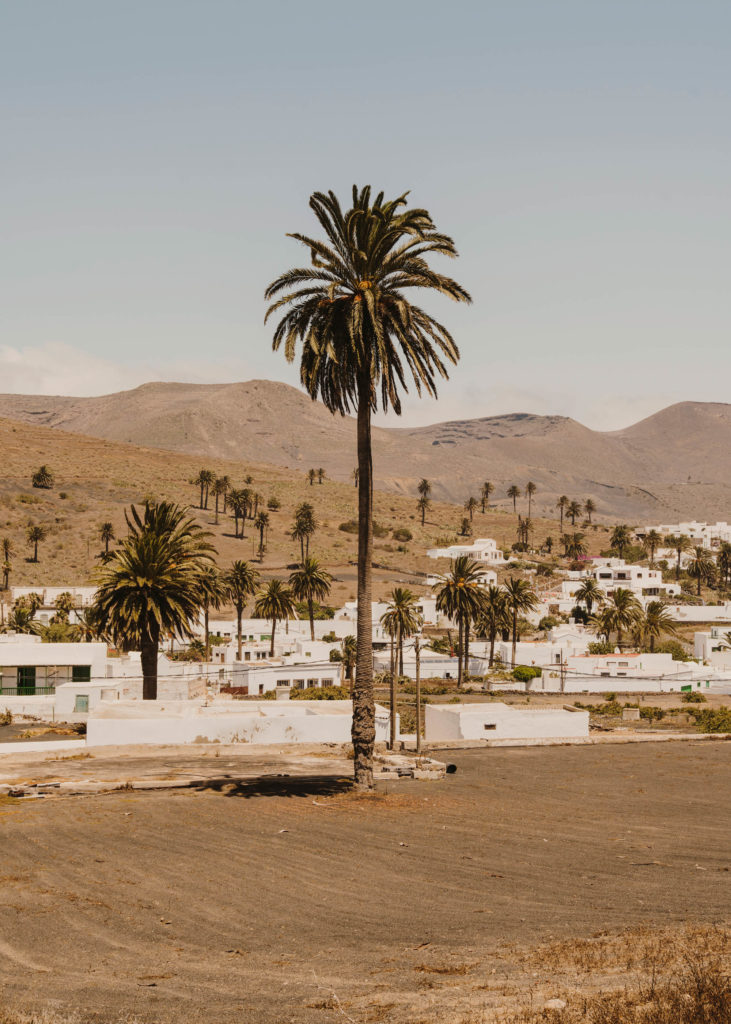 #1617 #lanzarote #haria #towns #landscape #travel