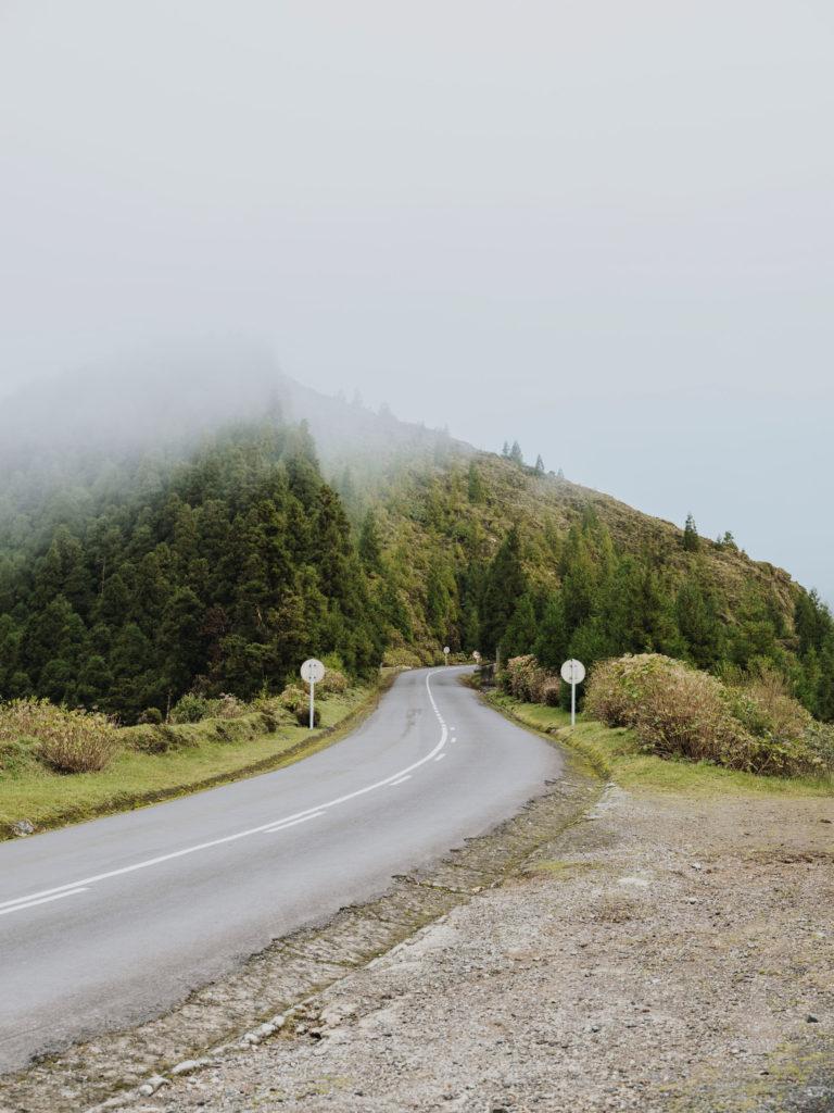 #departures #portugal #azores #setecidades #forest #road #gfx50s