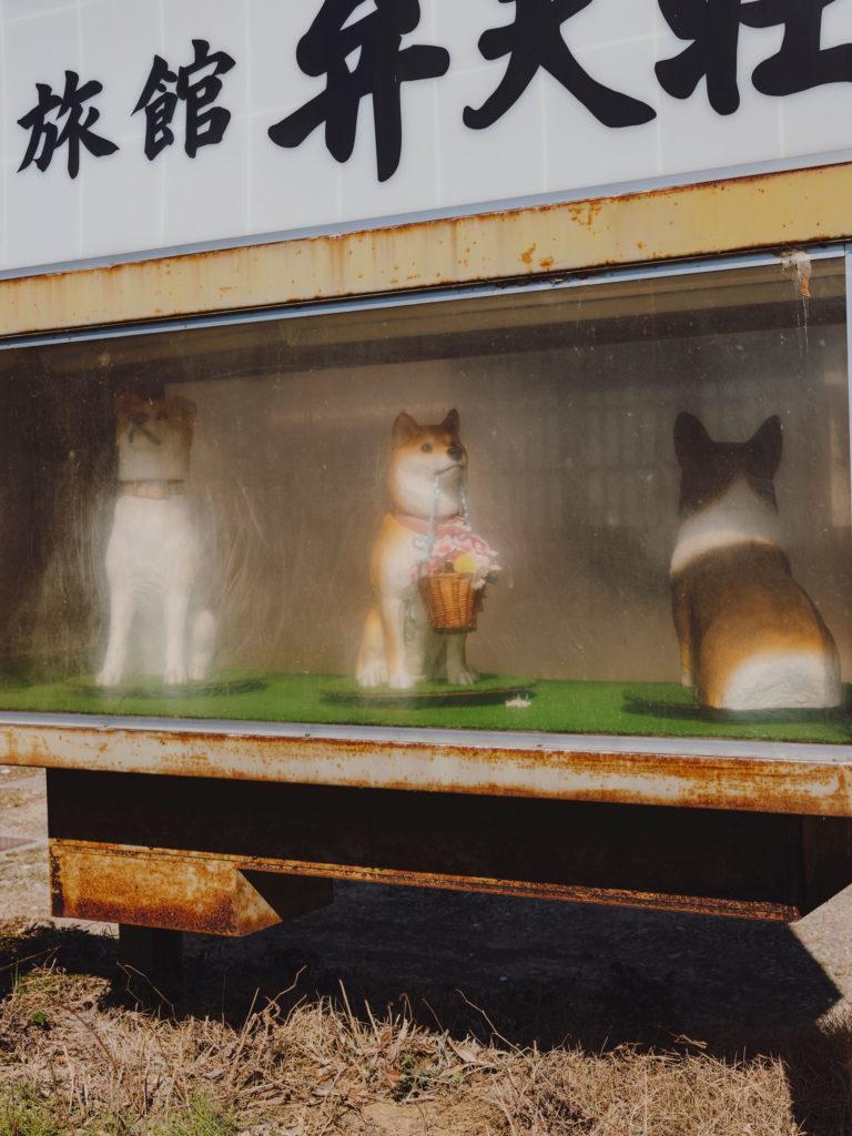 #japan #alps #takayama #personal #2018 #akita #dogs