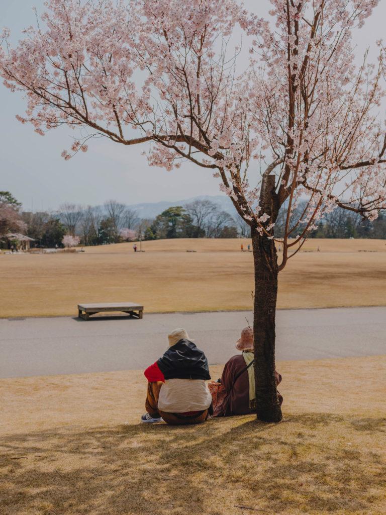 #kanazawa #park #japan #castle #people #2018