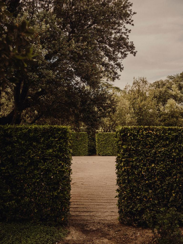 #caruncho #gardener #workspace #studio #editorial #madrid #openhousemagazine #garden #vegetal