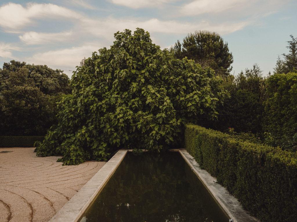 #caruncho #gardener #workspace #studio #editorial #madrid #openhousemagazine #vegetal