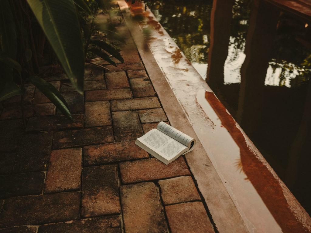 #airbnb #uniqueplaces #casavolta #puertoescondido #mexico #oaxaca #books #pool