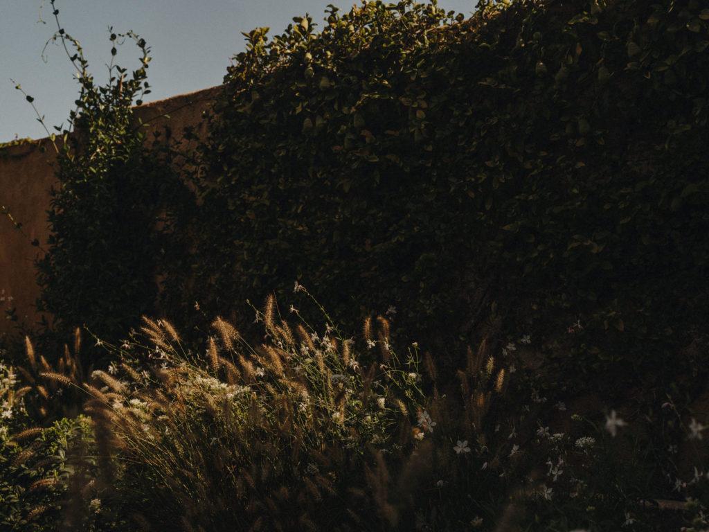 #pottershouse #lucianogiubbilei #mallorca #sonservera #gardens #green #openhousemagazine