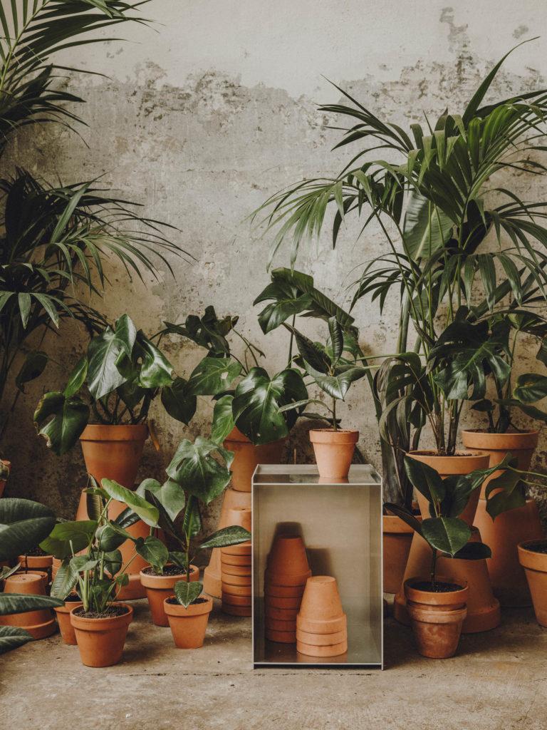 #frama #interiors #furniture #alblanc #andrewtrotter #plants